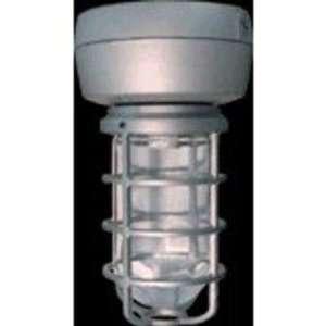 Vp Hid Ceiling 100W Hps Qt Hpf 1 2 Silver W Gl Globe Cast