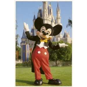 Walt Disney World Magic Kingdom Mickey Mouse 4x6 Postcard