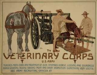LOT 2 HORSE VETERINARY CORPS MEDICINE ARMY VETERINARIAN DOCTOR 13X19