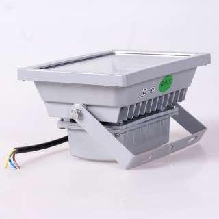 10W 20W 30W 50W LED Flood light Pure/Warm white Outdoor Lamp AC 110V