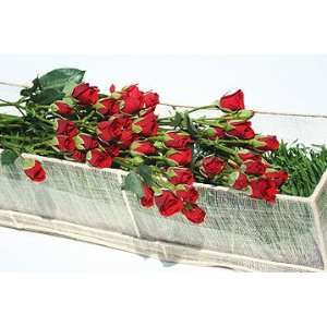 18 Stems Red Spray Roses Boxed in Stems Patio, Lawn