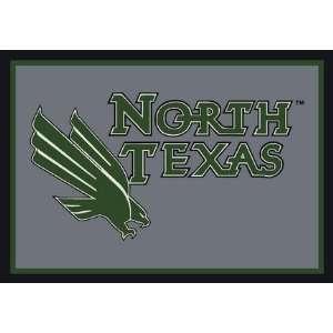 North Texas Mean Green 5 x 8 Team Door Mat: Sports