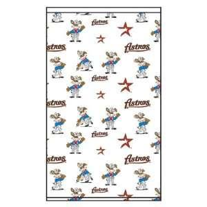Roller & Solar Shades MLB Houston Astros Mascot Pattern