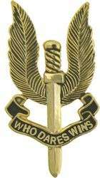 SAS SPECIAL AIR SERVICE PIN