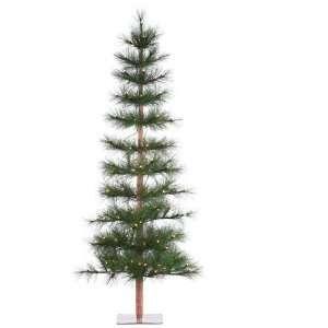 Pre Lit Slim Long Needle Washington Pine Christmas Tree   Clear Lights