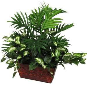 HOYA MIX SILK GREENERY DECORATIVE POTTED PLANT 75: Home & Kitchen