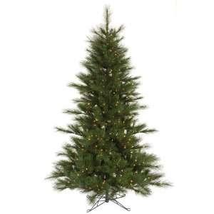 15? X 80 Scotch Pine Dura Lit 2300cl