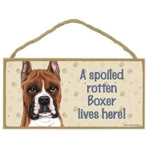 A Spoiled Rotten Boxer (Cropped Ears) Lives Here   5 X 10