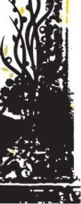 311 BAND BLACK T SHIRT Size S, M, L, XL, 2XL