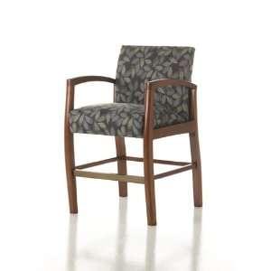 Studio Q Healthcare Inspire Hip Patient Chair  Kitchen