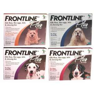Frontline Plus Dog Flea and Tick Treatment   6 Pack Pet