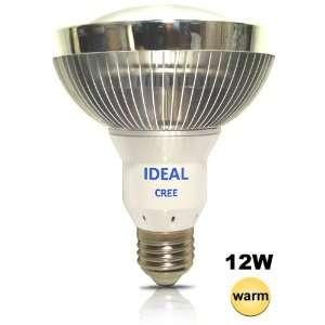 Watt Warm White 3000K PAR30 Flood Light Bulb 90 deg   Replace 100 watt