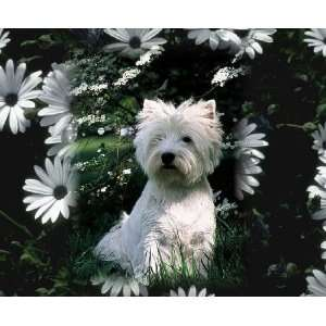 West Highland Terrier White Dog Computer mouse pad