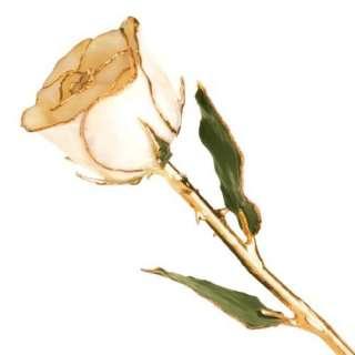 Long Stem Dipped 24k Gold Trim White Rose In Gold Gift Box