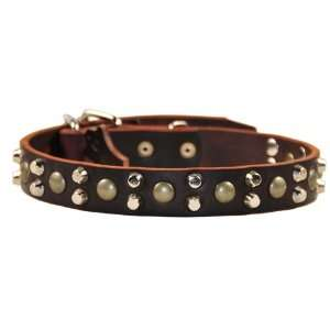 Dean & Tyler Leather Dog Collar Bumps & Bits   High Quality Leather