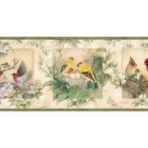 Sage Songbirds Wallpaper Border: Baby